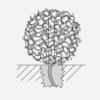 ICONE-catalogo-2018_DEFINITIVO-345-copia